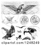 Clipart Of Black And White Vintage American Bald Eagles Royalty Free Vector Illustration by BestVector
