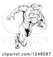 Black And White Muscular Bulldog Mascot Running Upright