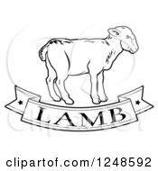 Clipart Of A Black And White Food Banner And Lamb Royalty Free Vector Illustration