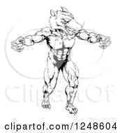 Clipart Of A Black And White Muscular Aggressive Boar Mascot Royalty Free Vector Illustration