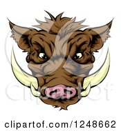 Clipart Of An Aggressive Boar Mascot Face Royalty Free Vector Illustration