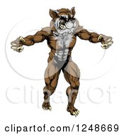 Clipart Of A Muscular Raccoon Mascot Standing Upright Royalty Free Vector Illustration by AtStockIllustration