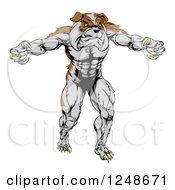 Clipart Of A Muscular Bulldog Mascot Standing Upright Royalty Free Vector Illustration