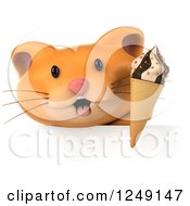 Clipart Of A 3d Ginger Cat Holding An Ice Cream Cone Over A Sign Royalty Free Illustration