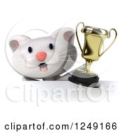 Clipart Of A 3d Happy White Kitten Holding A Trophy Cup Over A Sign Royalty Free Illustration