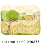 Clipart Of A Safari Landscape With Giraffes And Birds Royalty Free Vector Illustration