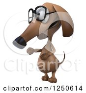 Clipart Of A 3d Bespectacled Dachshund Dog Presenting Royalty Free Illustration