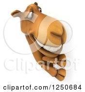 Clipart Of A 3d Camel Looking Around A Sign Royalty Free Illustration