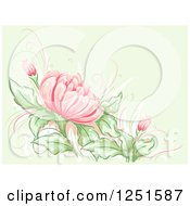 Clipart Of A Green Background With Pink Lilies Royalty Free Vector Illustration by BNP Design Studio