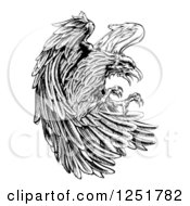 Clipart Of A Fierce Black And White Eagle Attacking Royalty Free Vector Illustration