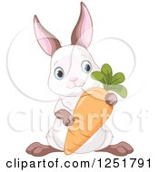Clipart Of A Cyte Bunny Rabbit With A Carrot Royalty Free Vector Illustration