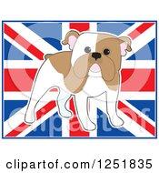 Cute Standing English Bulldog Over A Uk Flag