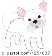 Clipart Of A Cute White French Bulldog Cocking Its Head Royalty Free Vector Illustration
