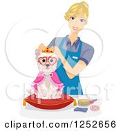 Clipart Of A Blond Caucasian Groomer Dressing Up A Dog Royalty Free Vector Illustration