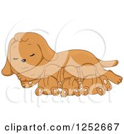 Clipart Of A Cute Dog Nursing Her Puppies Royalty Free Vector Illustration