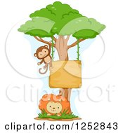Monkey Swinging From A Sign On A Tree Over A Lion