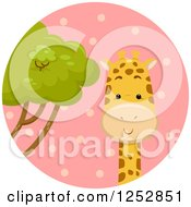 Clipart Of A Cute Giraffe In A Pink Circle Royalty Free Vector Illustration