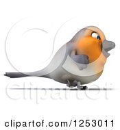 Clipart Of A 3d Red Robin Bird Walking Royalty Free Illustration