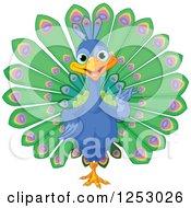 Cute Peacock Bird Presenting
