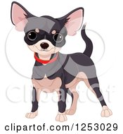Clipart Of A Cute Black And Tan Chihuahua In A Red Collar Royalty Free Vector Illustration