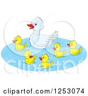 Cute Mother Duck And Babies Swimming