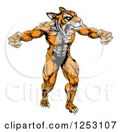 Clipart Of A Muscular Fierce Tiger Man Attacking Royalty Free Vector Illustration