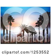 Clipart Of Silhouetted Island Palm Trees Over Sky With Flares Royalty Free Vector Illustration by KJ Pargeter