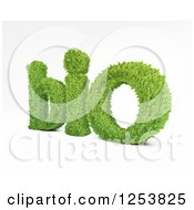 3d Leafy Bio Text On White