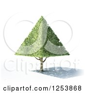 Clipart Of A 3d Pyramid Tree And Shadow Royalty Free Illustration