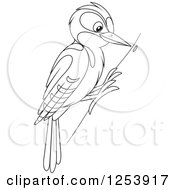 Clipart Of A Black And White Woodpecker Bird On A Tree Royalty Free Vector Illustration by Alex Bannykh