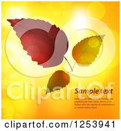 Clipart Of Autumn Leaves Over Flares With Sample Text Royalty Free Vector Illustration