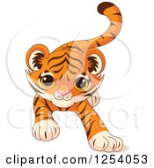 Clipart Of A Cute Playful Tiger Cub Stalking Royalty Free Vector Illustration by Pushkin