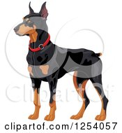 Clipart Of An Alert Doberman Pinscher Guard Dog Royalty Free Vector Illustration