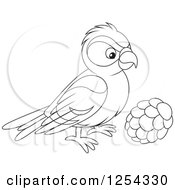 Clipart Of A Black And White Red Crossbill Bird Royalty Free Vector Illustration