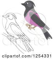 Clipart Of Purple Martin Birds Royalty Free Vector Illustration by Alex Bannykh
