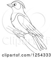 Clipart Of A Black And White Purple Martin Bird Royalty Free Vector Illustration by Alex Bannykh