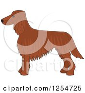 Cartoon Of A Cute Irish Setter Dog In Profile Royalty Free Vector Clipart