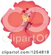 Clipart Of A Pink Hibiscus Flower Royalty Free Vector Illustration by Amanda Kate