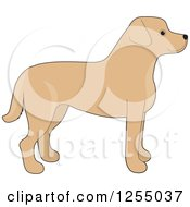 Clipart Of A Cute Yellow Labrador Retriever Dog In Profile Royalty Free Vector Illustration