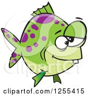 Green And Purple Spotted Dopey Fish