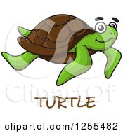 Clipart Of A Swimming Sea Turtle And Text Royalty Free Vector Illustration by Vector Tradition SM