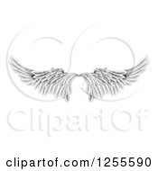 Clipart Of A Pair Of Black And White Angel Or Eagle Wings Royalty Free Vector Illustration