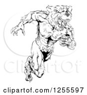 Clipart Of A Black And White Muscular Bear Man Running Upright Royalty Free Vector Illustration