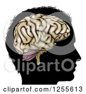 Clipart Of A Silhouetted Mans Head With A Visual Brain Royalty Free Vector Illustration