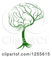 Clipart Of A Green Brain Tree Royalty Free Vector Illustration by AtStockIllustration