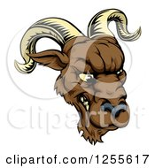 Clipart Of A Snarling Ram Mascot Head Royalty Free Vector Illustration by AtStockIllustration