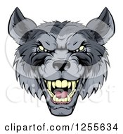 Clipart Of A Snarling Gray Wolf Mascot Head Royalty Free Vector Illustration by AtStockIllustration