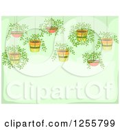 Clipart Of A Green Background With Hanging Potted Plants Royalty Free Vector Illustration