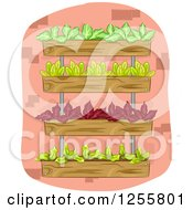 Clipart Of A Vertical Garden With Leafy Plants Royalty Free Vector Illustration