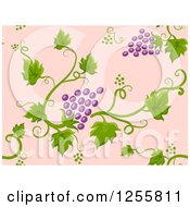 Clipart Of A Seamless Background Pattern Of Purple Grapes And Vines On Pink Royalty Free Vector Illustration by BNP Design Studio